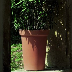 Camelia Pot - 46 cm with saucer