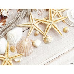 Tablecloth 30x40 Decoration Sea shells
