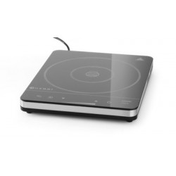 Induction cooker 2000